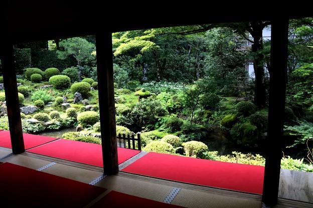三千院 部屋から眺める庭園4