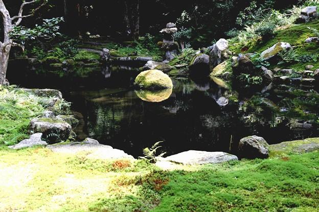三千院の池の庭園