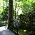 朱雀門への道