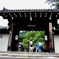 Photos: 実相院の門