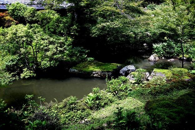 実相院の池の庭園2