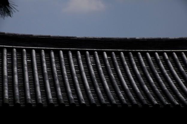 龍源院の瓦屋根