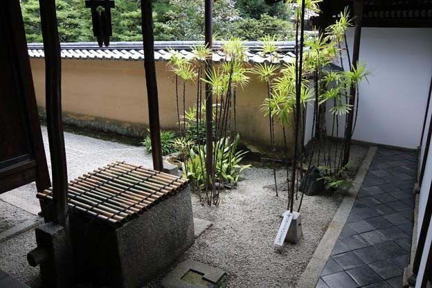 龍源院の担雪井