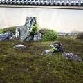 Photos: 龍源院の龍吟庭 遥拝石1