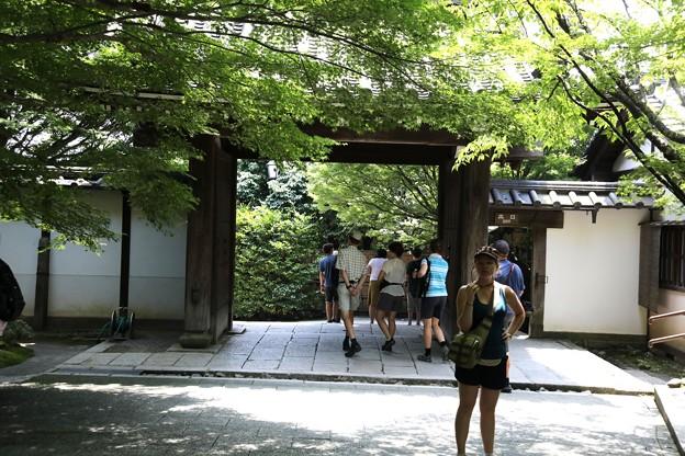 龍安寺の山門観光