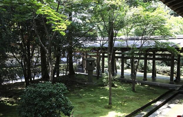 龍安寺境内風景2