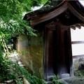 龍安寺 土塀