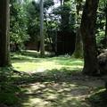 Photos: 龍安寺の鏡容池へ庭園散策