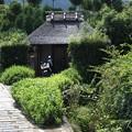 Photos: 龍安寺より祇王寺への風景1