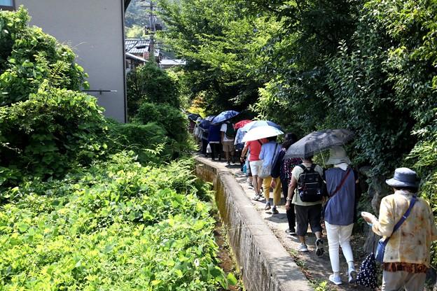 祇王寺への散策風景