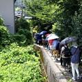Photos: 祇王寺への散策風景