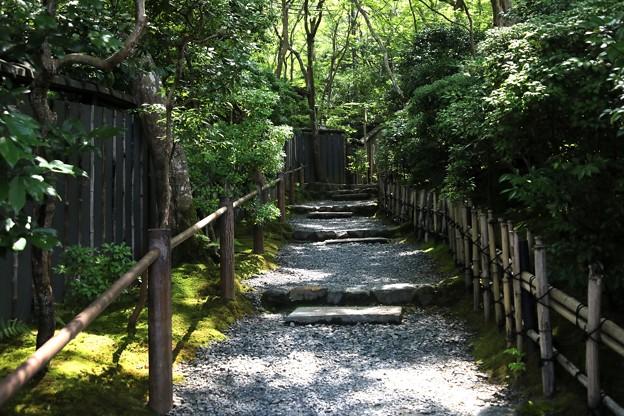 祇王寺の庭園への道風景