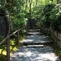 Photos: 祇王寺の庭園への道風景