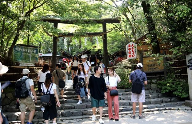 Photos: 野宮神社