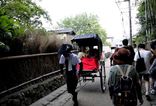 嵯峨野を走行する人力車