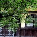 Photos: 本殿の窓