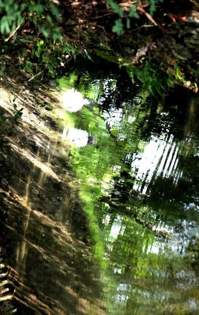 水面への映り込み2