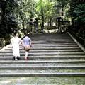 Photos: 法然院の階段