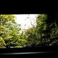 Photos: 法然院の山門の風景