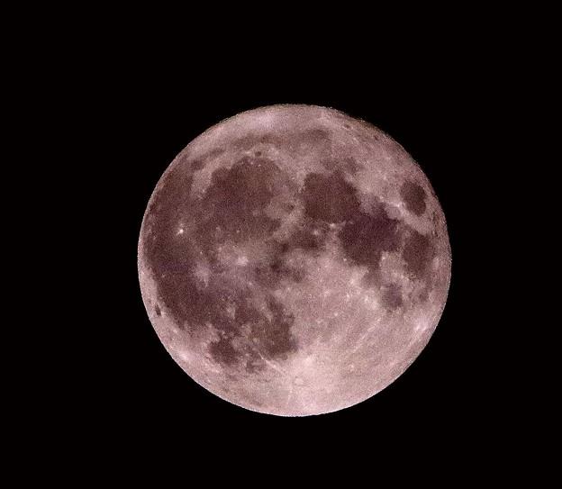 満月(令和元年9月14日)