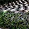 Photos: 銀閣寺の石垣