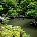 銀閣寺錦鏡風景3