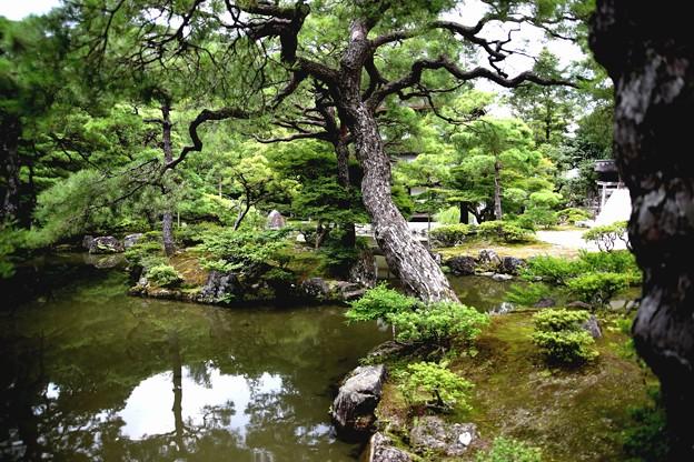 銀閣寺錦鏡風景4