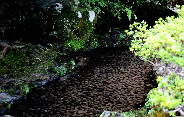 銀閣寺境内の水の流れ