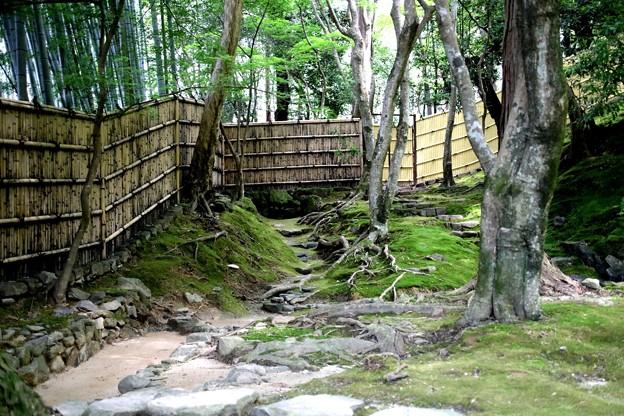 銀閣寺苔の庭園2
