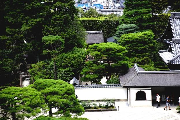 銀閣寺境内風景2