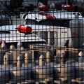 Photos: 第六機械兵旅団駐屯地