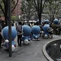 Photos: 人気者