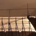 写真: 広島大橋