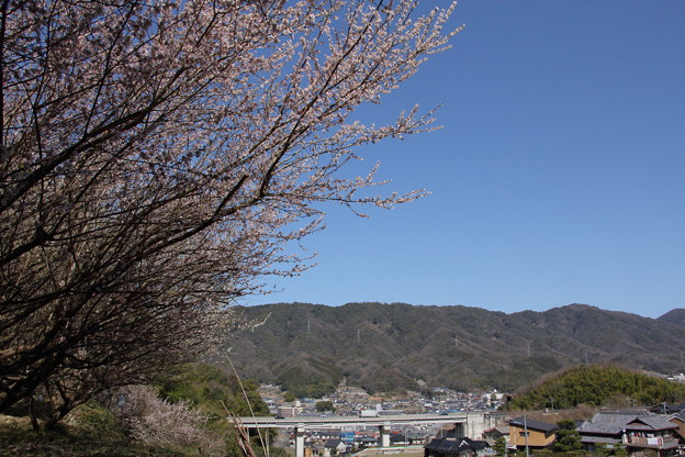 写真: 晴天