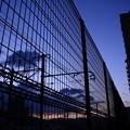 写真: フェンスの向こう