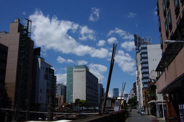 写真: 神田川に初夏の風が吹いていた