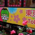 Photos: 花電車
