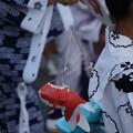 写真: 金魚ちょうちん祭り