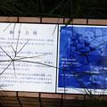 Photos: 助平古墳