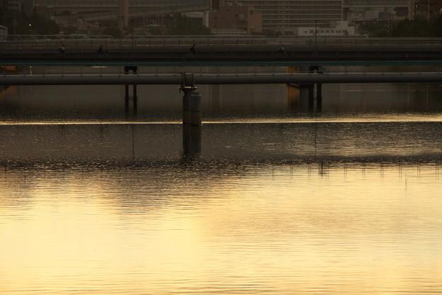 写真: 光る川