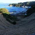 写真: 遊子水荷浦6