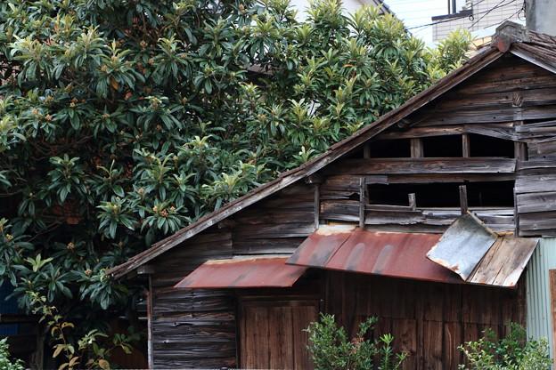 宇和島4-枇杷の家