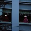 Photos: 福岡20-ショーウィンドゥ