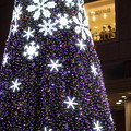 Photos: Xmas Tree