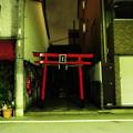 Photos: 東京ナイト1