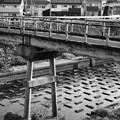Photos: 川底ブロック