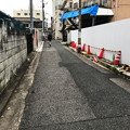 Photos: パイロンの道