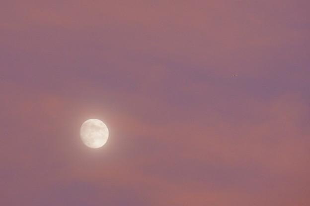 Photos: 月と