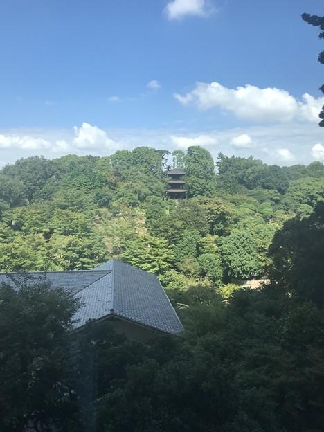 椿山荘・三重塔