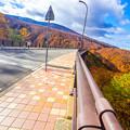 写真: 城ヶ倉大橋